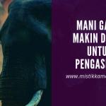 Mengapa Mustika Mani Gajah Masih Dicari Sampai Saat Ini?