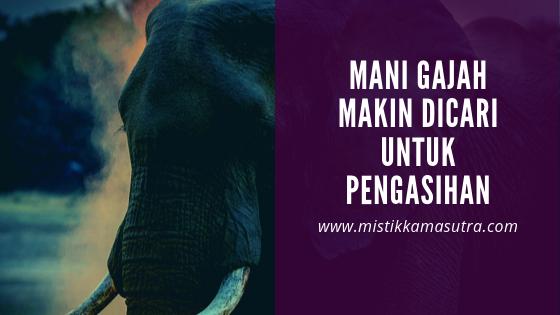 mustika mani gajah